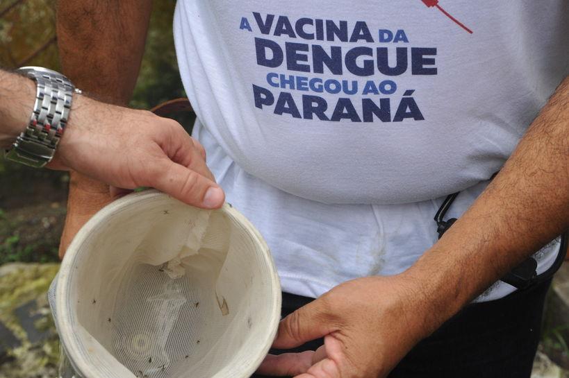 92% dos municípios têm levantamento sobre a dengue